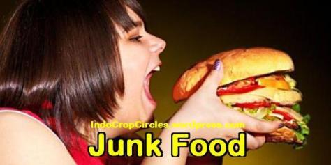 junk food header